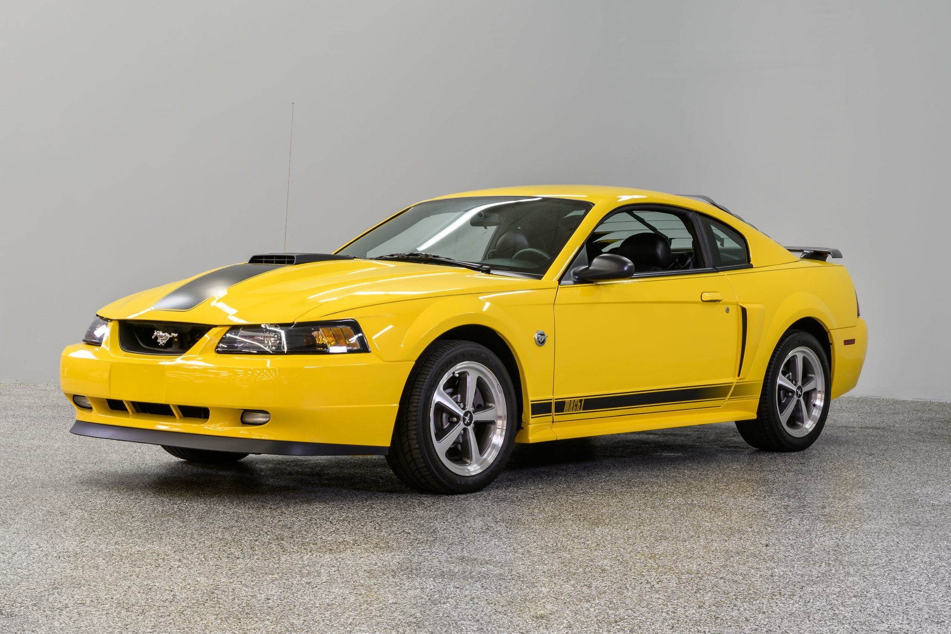 2004 ford mustang mach i