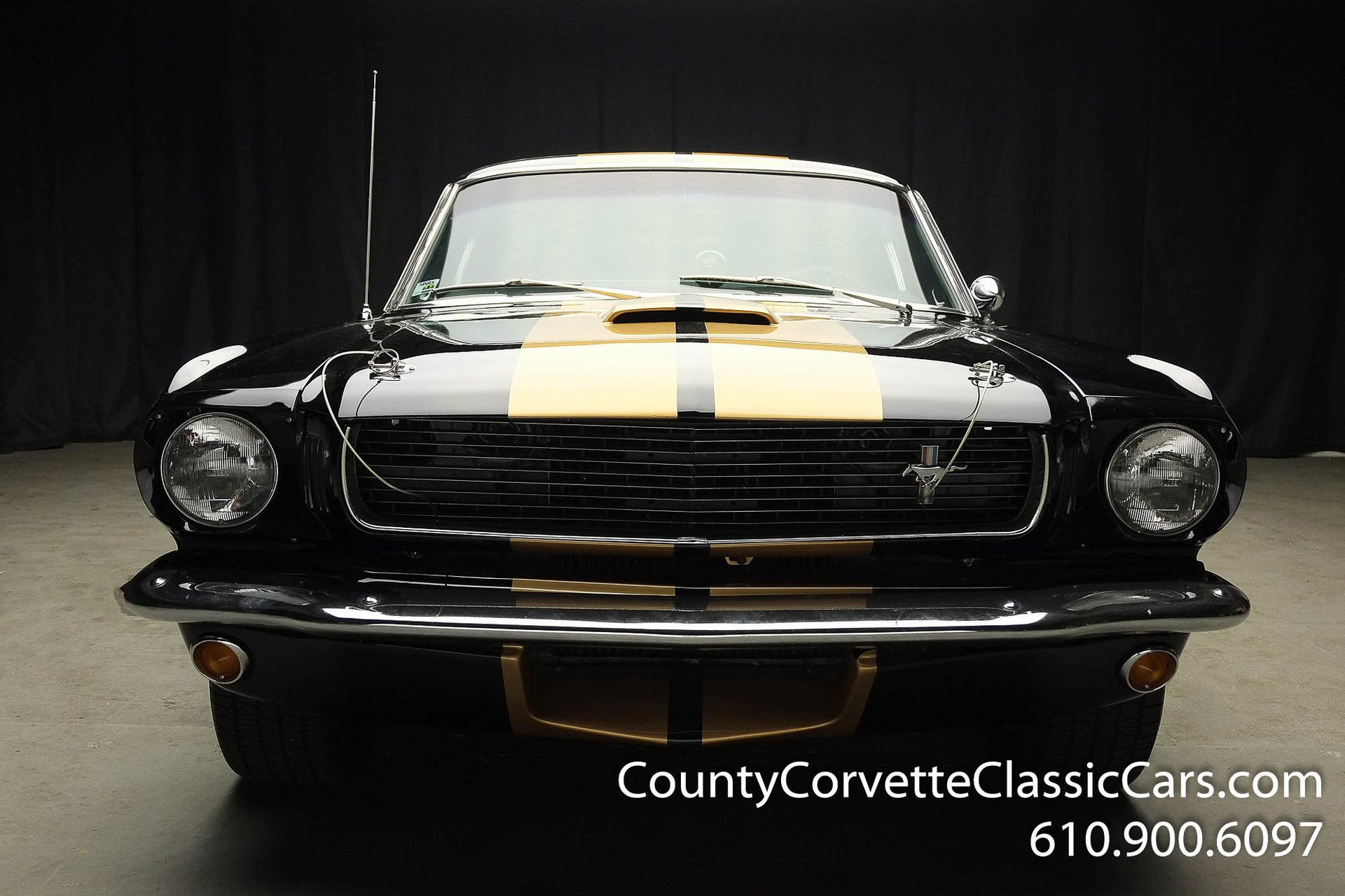 1966 shelby gt350 h