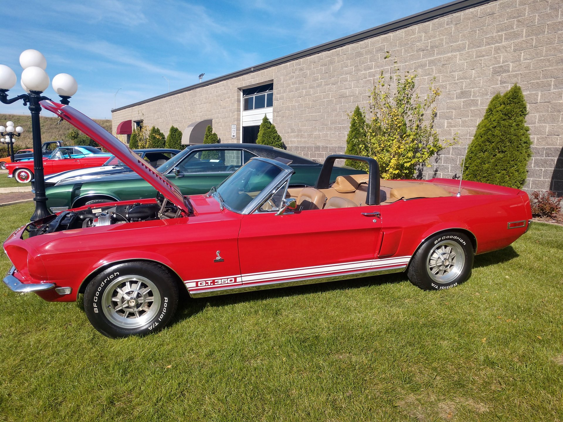 1968 Ford Shelby GT