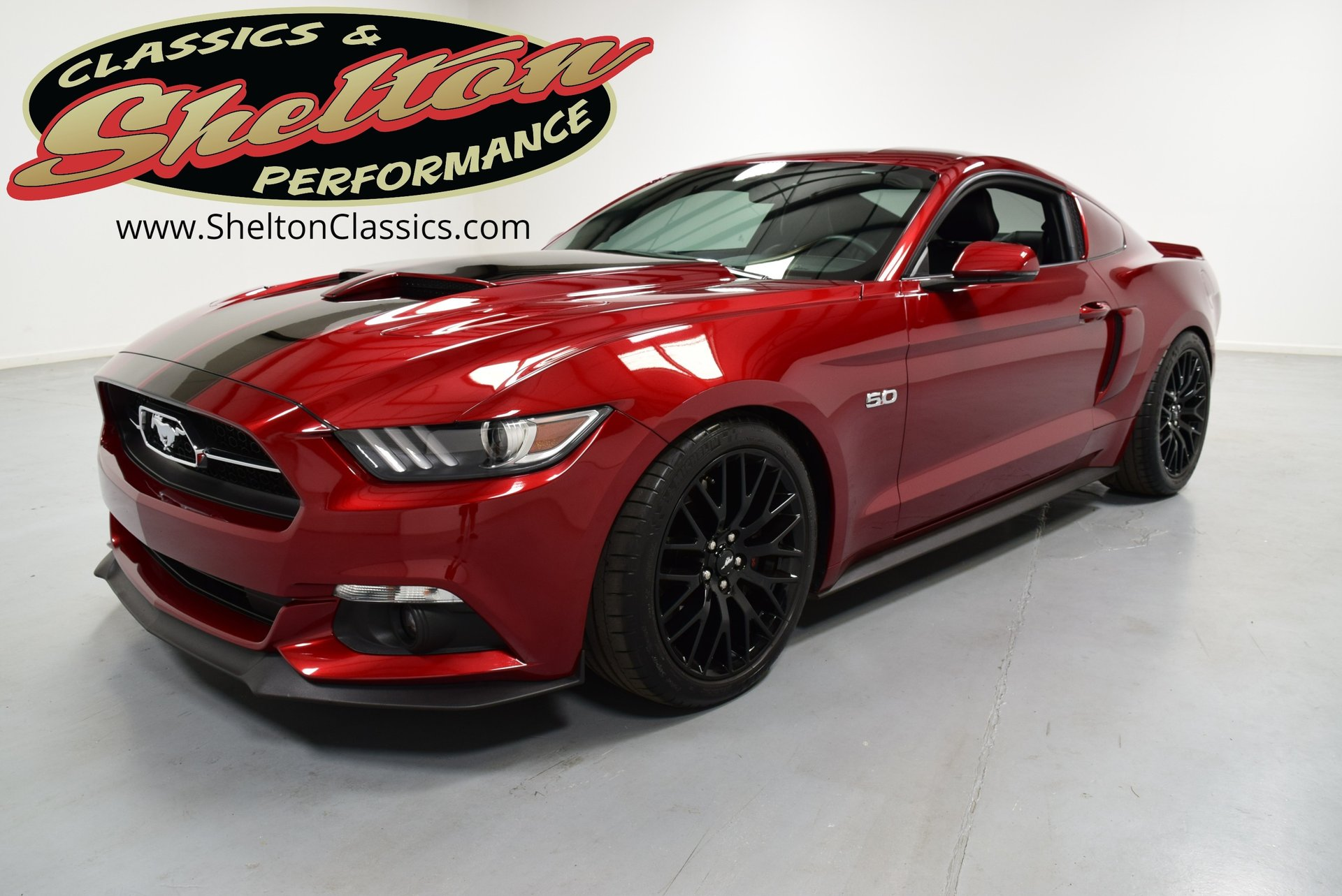 2015 Ford Mustang Gt 50th Anniversary For Sale 165862