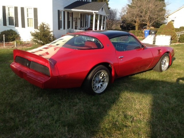 1981 pontiac firebird trans am