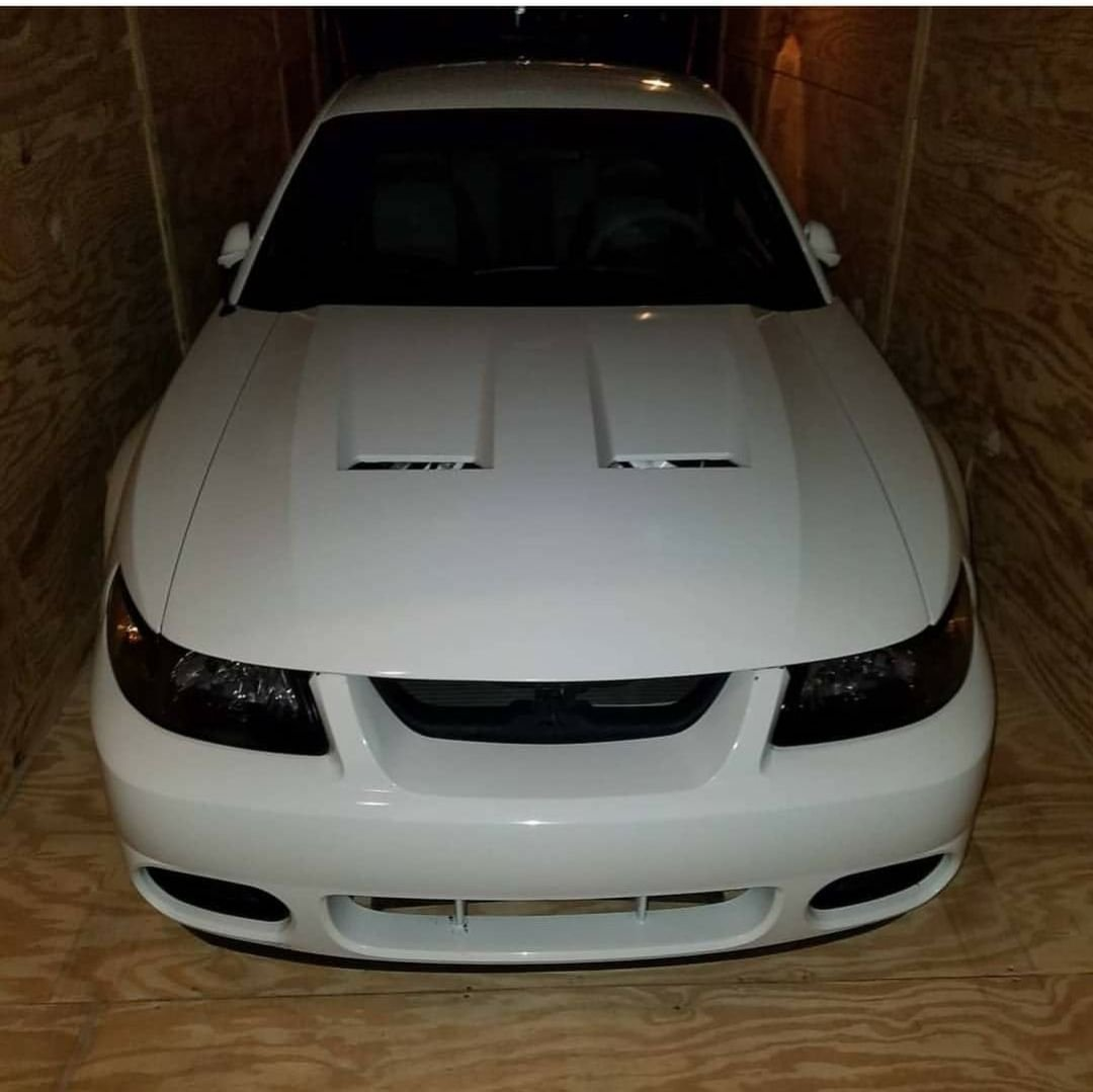 2004 ford mustang cobra
