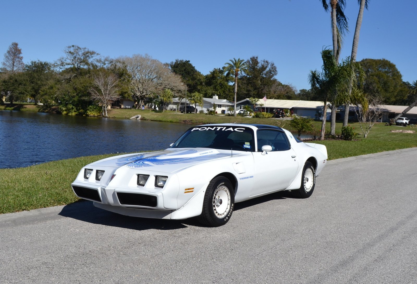1981 pontiac trans am coupe
