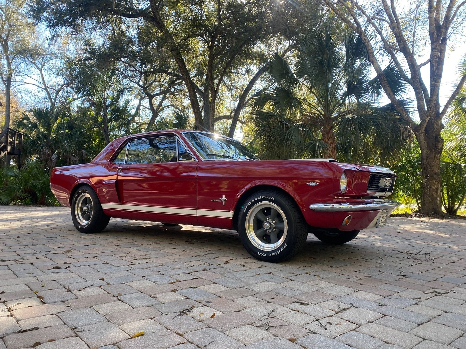 1966 ford mustang gt 350 tribute