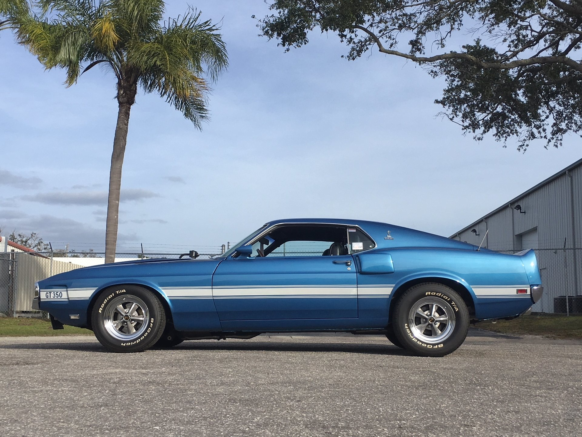 1969 ford mustang shelby gt350 fastback