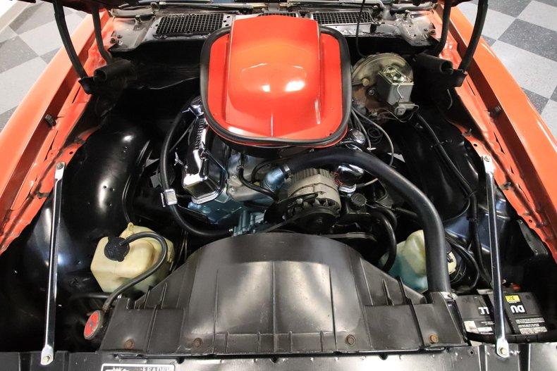 1978 Pontiac Firebird 3
