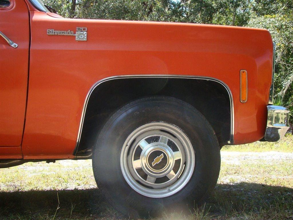 1979 Chevrolet C20