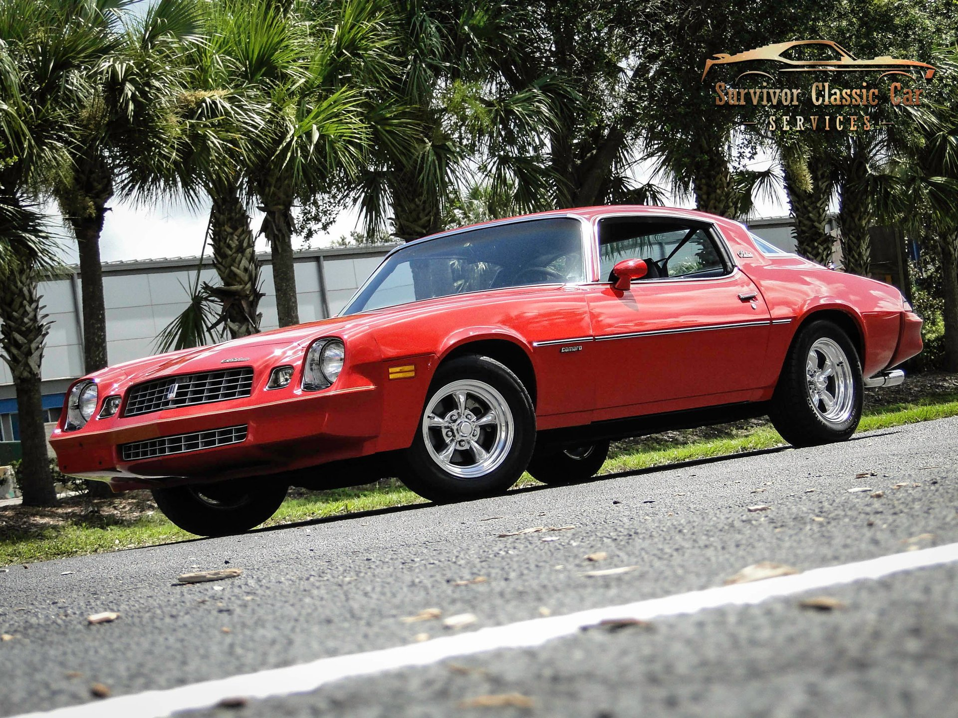1979 chevrolet camaro berlinetta