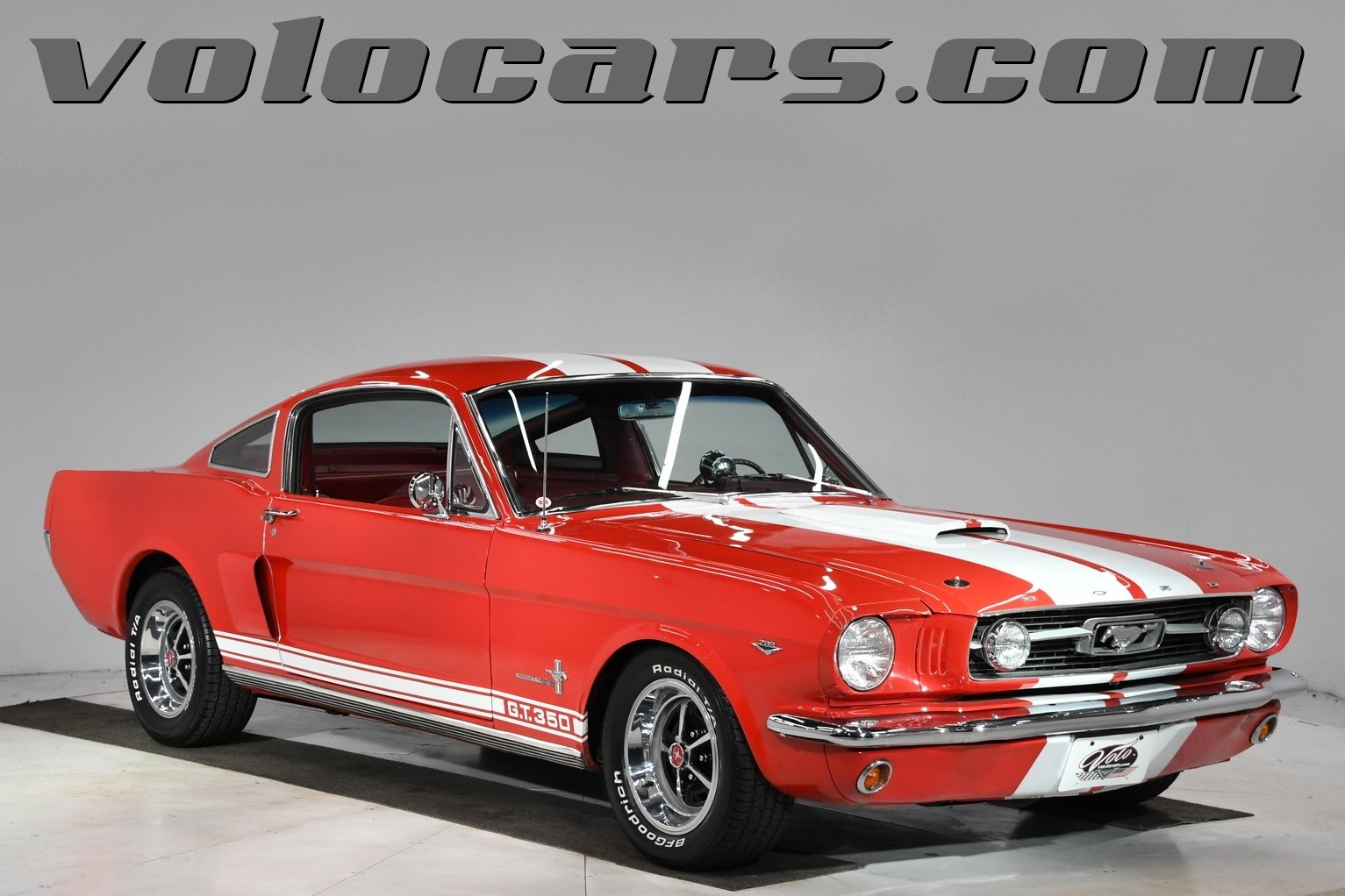 1966 ford mustang shelby tribute